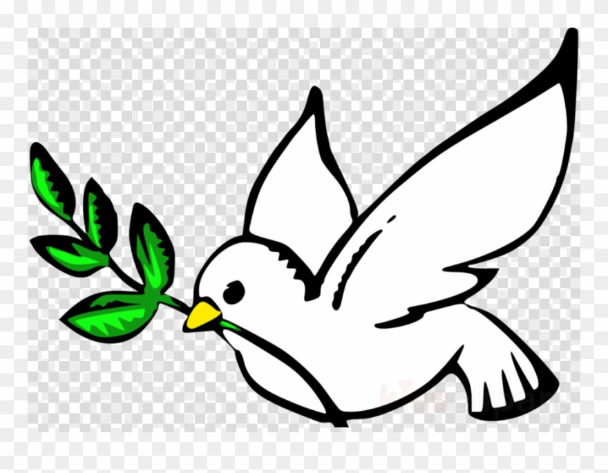 133-1332629_dove-peace-clipart-pigeons-and-doves-bird-doves - Our ...